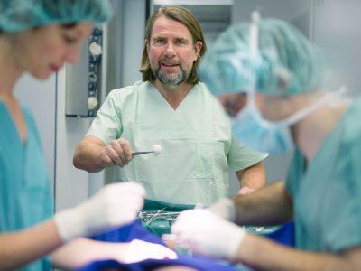 Operation am Schwein – Reportagefotos aus dem OP